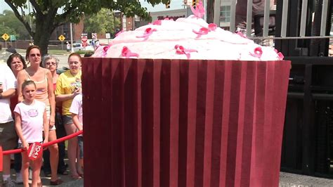 Largest Cupcake made by NH Company makes Guinness Book of